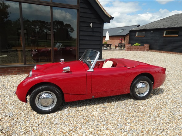 Large image for the Used Austin Healey SPRITE